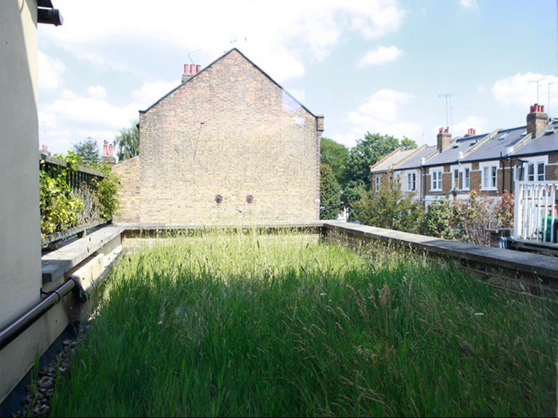 The green roof of the refurbished property